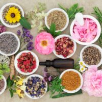 Flower Power Fragrance Oils